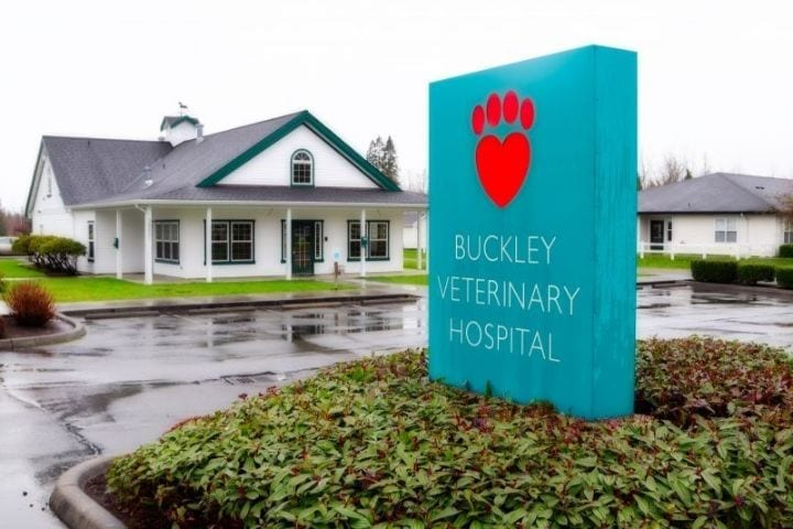 Buckley Veterinary Hospital a Buckley, WA vet